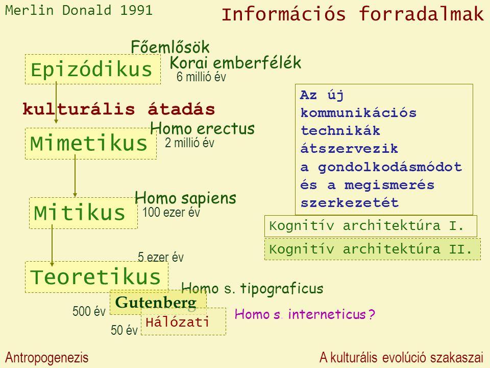 Epizódikus Mimetikus Homo erectus Főemlősök Korai emberfélék Mitikus Homo sapiens Teoretikus Homo s.
