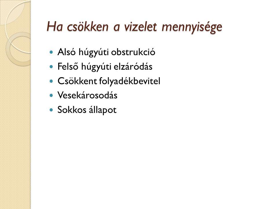 Az alsó húgyúti obstrukció Okai: ◦ Szűkület (infekció, trauma, veleszületett) ◦ Kő (hólyag, húgycső) ◦ Prosztata (BPH, tumor, gyulladás) ◦ Trauma vagy tumor (hólyag, húgycső, cervix, rectum, penis) ◦ Székletrekedés ◦ Húgyhólyag alulműködés, záróizom túlműködés Túlfolyásos inkontinencia Következményei: Fertőzés, kőképződés, hólyag megvastagodás, hólyag kimerülés, reflux, vesekárosodás BPH: benignus prosztata hiperplázia