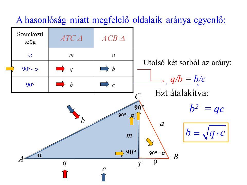  90  c b p q a A T B C m A hasonlóság miatt megfelelő oldalaik aránya egyenlő: Szemközti szög ATC  ACB   ma 90  -  qb 90  bc 90  -  90  Uto