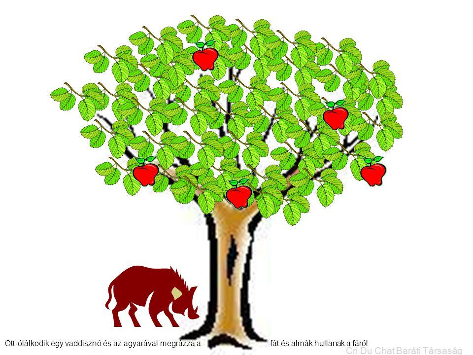 Ott ólálkodik egy vaddisznó és az agyarával megrázza a fát és almák hullanak a fáról.