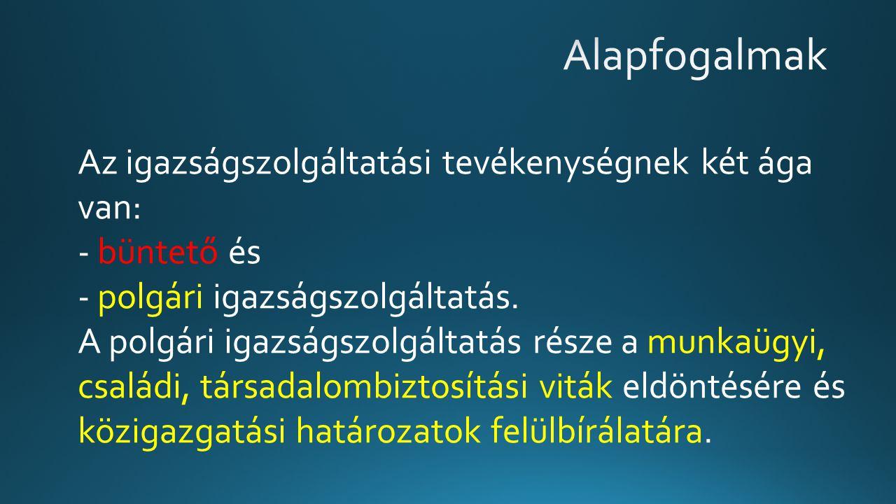 A pervezető végzés fejrésze Budapest Környéki Törvényszék 21.P.20.699/2014/6.