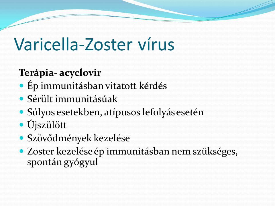 Varicella-Zoster vírus Terápia- acyclovir Ép immunitásban vitatott kérdés Sérült immunitásúak Súlyos esetekben, atípusos lefolyás esetén Újszülött Szö