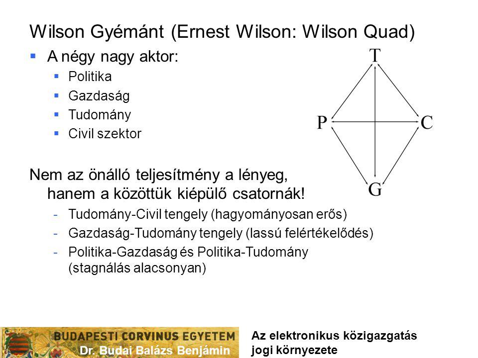 Wilson Gyémánt (Ernest Wilson: Wilson Quad)  A négy nagy aktor:  Politika  Gazdaság  Tudomány  Civil szektor Nem az önálló teljesítmény a lényeg,