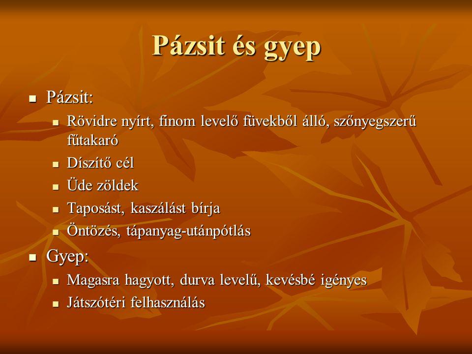 Pázsit és gyep Pázsit: Pázsit: Rövidre nyírt, finom levelő füvekből álló, szőnyegszerű fűtakaró Rövidre nyírt, finom levelő füvekből álló, szőnyegszer