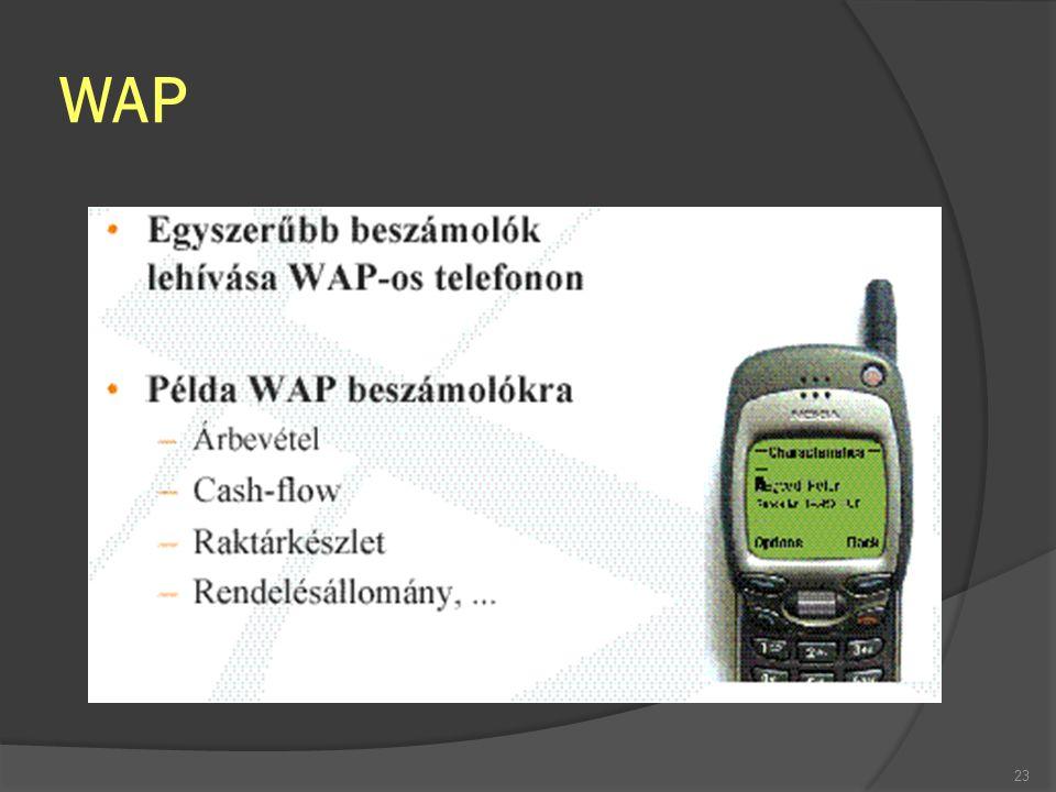 WAP 23