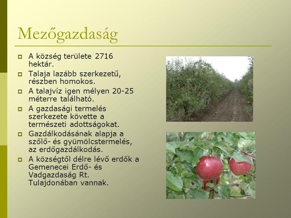 Mezőgazdaság  A község területe 2716 hektár.  Talaja lazább szerkezetű, részben homokos.  A talajvíz igen mélyen 20-25 méterre található.  A gazda