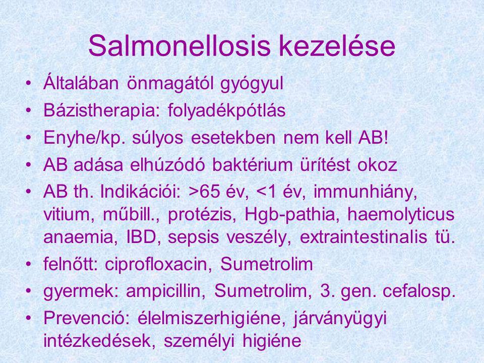 Salmonellosis kezelése Általában önmagától gyógyul Bázistherapia: folyadékpótlás Enyhe/kp.