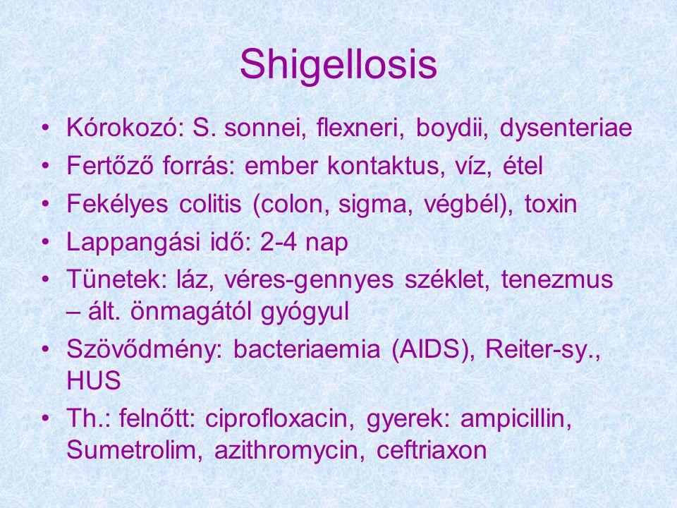 Shigellosis Kórokozó: S. sonnei, flexneri, boydii, dysenteriae Fertőző forrás: ember kontaktus, víz, étel Fekélyes colitis (colon, sigma, végbél), tox