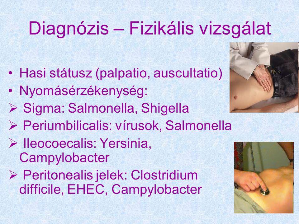 Diagnózis – Fizikális vizsgálat Hasi státusz (palpatio, auscultatio) Nyomásérzékenység:  Sigma: Salmonella, Shigella  Periumbilicalis: vírusok, Salmonella  Ileocoecalis: Yersinia, Campylobacter  Peritonealis jelek: Clostridium difficile, EHEC, Campylobacter