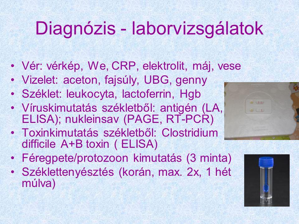 Diagnózis - laborvizsgálatok Vér: vérkép, We, CRP, elektrolit, máj, vese Vizelet: aceton, fajsúly, UBG, genny Széklet: leukocyta, lactoferrin, Hgb Víruskimutatás székletből: antigén (LA, ELISA); nukleinsav (PAGE, RT-PCR) Toxinkimutatás székletből: Clostridium difficile A+B toxin ( ELISA) Féregpete/protozoon kimutatás (3 minta) Széklettenyésztés (korán, max.
