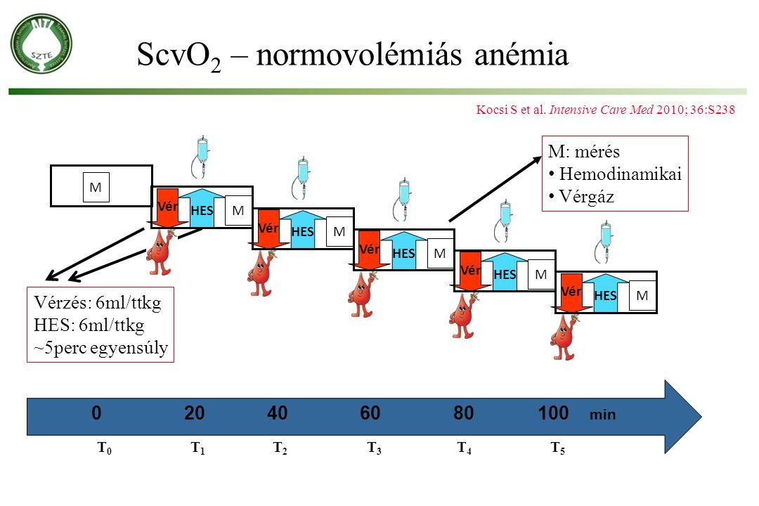 T 0 T 1 T 2 T 3 T 4 T 5 0 20 40 60 80 100 min Vérzés: 6ml/ttkg HES: 6ml/ttkg ~5perc egyensúly M: mérés Hemodinamikai Vérgáz ScvO 2 – normovolémiás ané