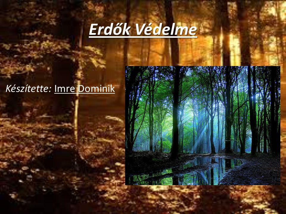 Erdők Védelme Készítette: Imre Dominik