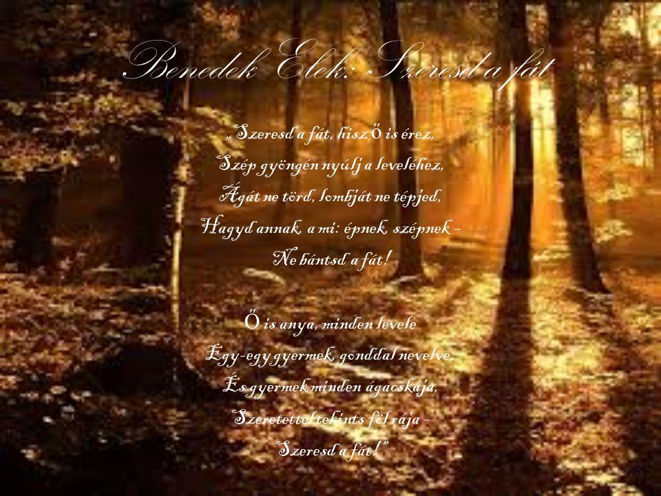 """Benedek Elek: Szeresd a fát """"Szeresd a fát, hisz ő is érez, Szép gyöngén nyúlj a leveléhez, Ágát ne törd, lombját ne tépjed, Hagyd annak, a mi: épnek,"""