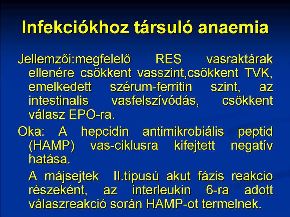 Újdonságok a haematológiában Dr.Kovács Gábor Semmelweis Egyetem, II.