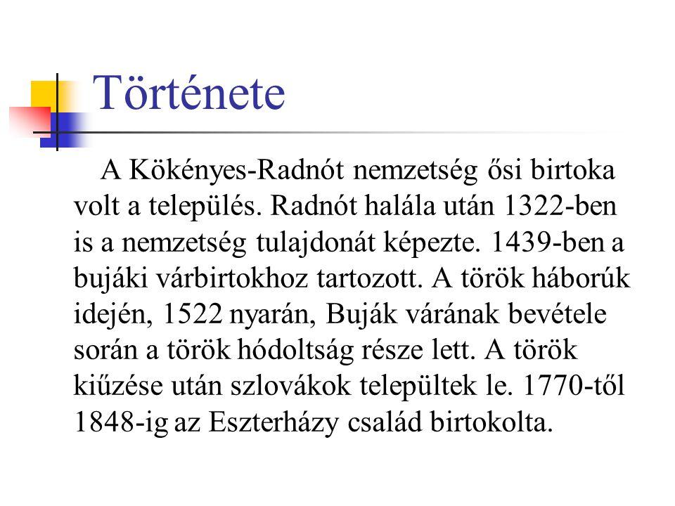 Története A Kökényes-Radnót nemzetség ősi birtoka volt a település. Radnót halála után 1322-ben is a nemzetség tulajdonát képezte. 1439-ben a bujáki v