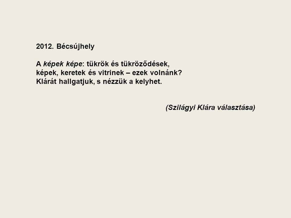 2012. Bécsújhely A képek képe: tükrök és tükröződések, képek, keretek és vitrinek – ezek volnánk.