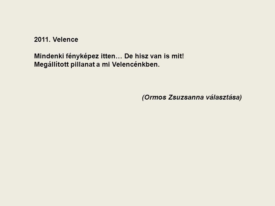 2011. Velence Mindenki fényképez itten… De hisz van is mit.