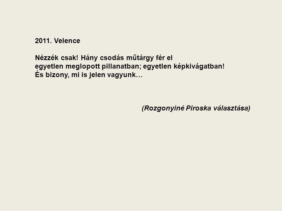 2011. Velence Nézzék csak.