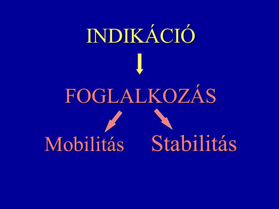 INDIKÁCIÓ FOGLALKOZÁS Mobilitás Stabilitás