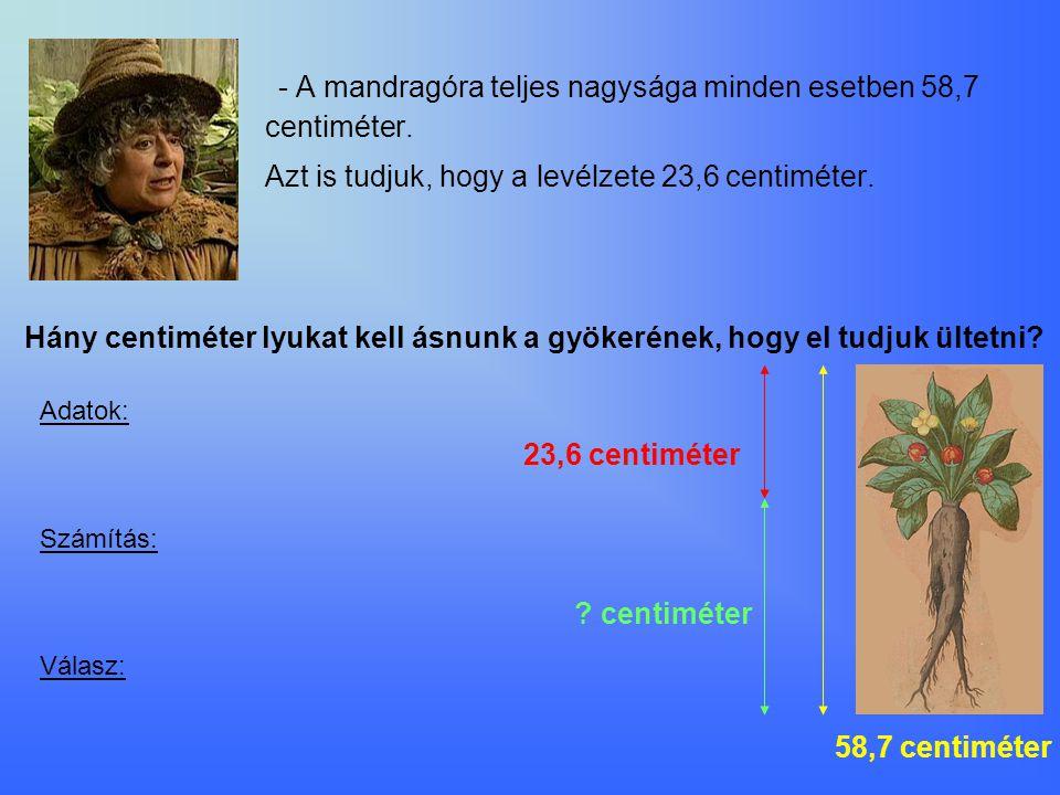 - A mandragóra teljes nagysága minden esetben 58,7 centiméter. Azt is tudjuk, hogy a levélzete 23,6 centiméter. Hány centiméter lyukat kell ásnunk a g