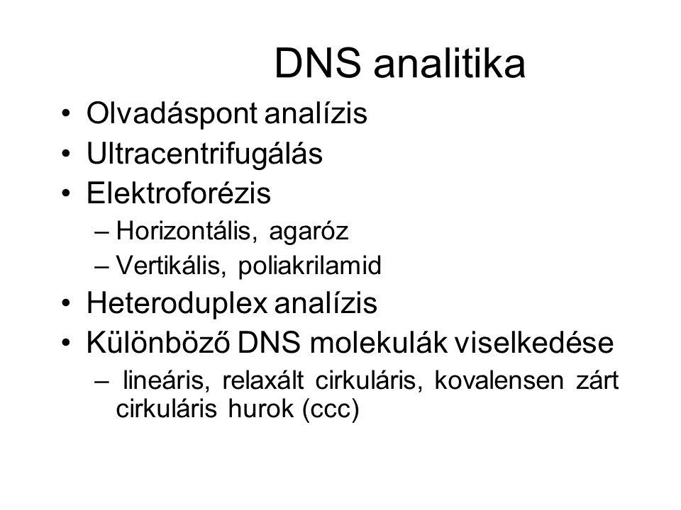 DNS analitika Olvadáspont analízis Ultracentrifugálás Elektroforézis –Horizontális, agaróz –Vertikális, poliakrilamid Heteroduplex analízis Különböző