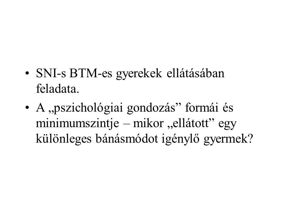 SNI-s BTM-es gyerekek ellátásában feladata.
