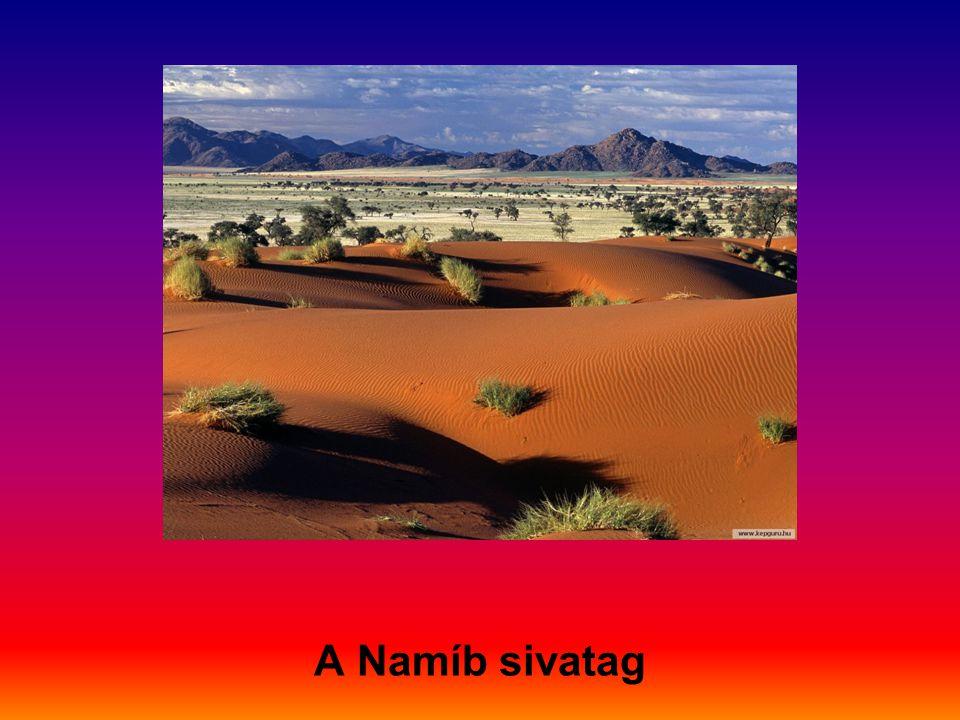 A Namíb sivatag