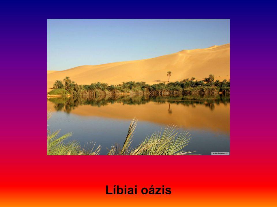 Líbiai oázis