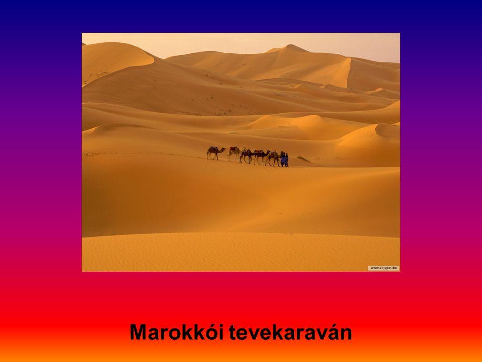 Marokkói tevekaraván