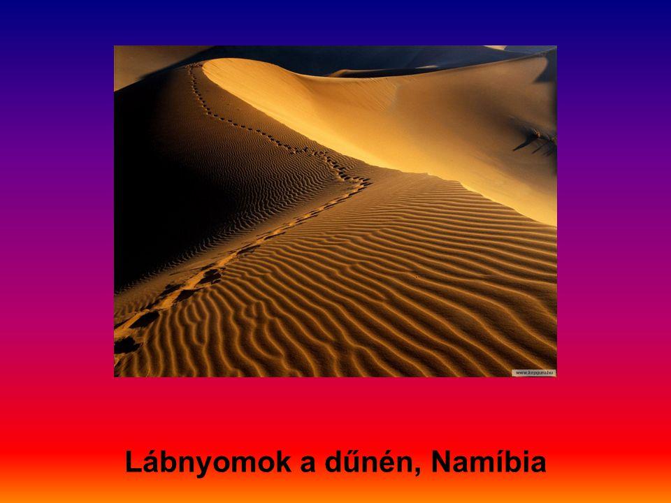 Lábnyomok a dűnén, Namíbia