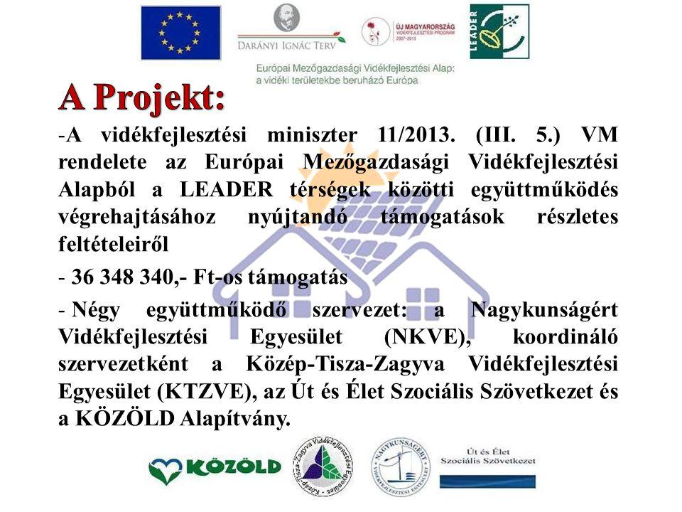 -A vidékfejlesztési miniszter 11/2013. (III.