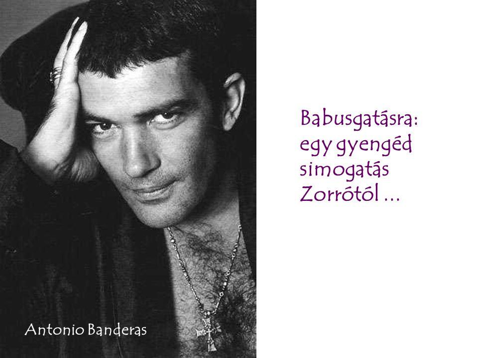 Babusgatásra: egy gyengéd simogatás Zorrótól... Antonio Banderas