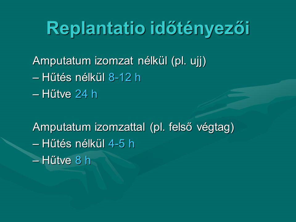 Replantatio időtényezői Amputatum izomzat nélkül (pl.