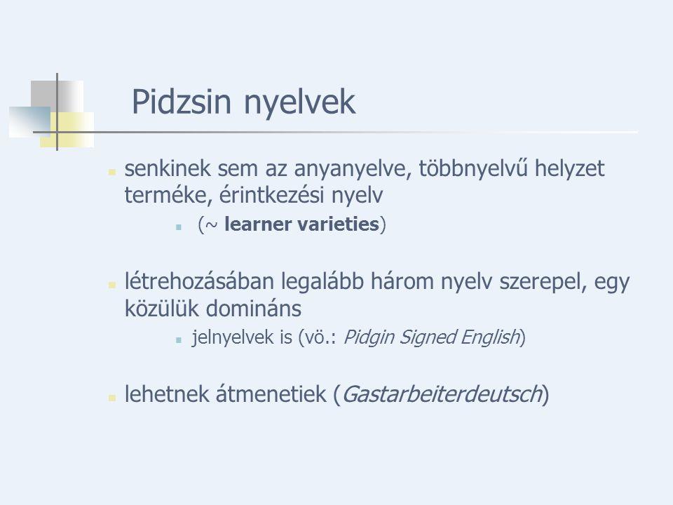 Pidzsin nyelvek senkinek sem az anyanyelve, többnyelvű helyzet terméke, érintkezési nyelv (~ learner varieties) létrehozásában legalább három nyelv szerepel, egy közülük domináns jelnyelvek is (vö.: Pidgin Signed English) lehetnek átmenetiek (Gastarbeiterdeutsch)