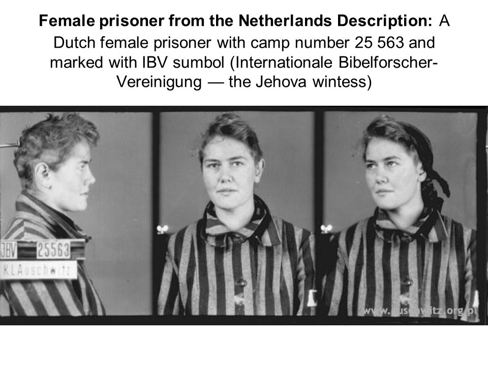 Female prisoner from the Netherlands Description: A Dutch female prisoner with camp number 25 563 and marked with IBV sumbol (Internationale Bibelfors