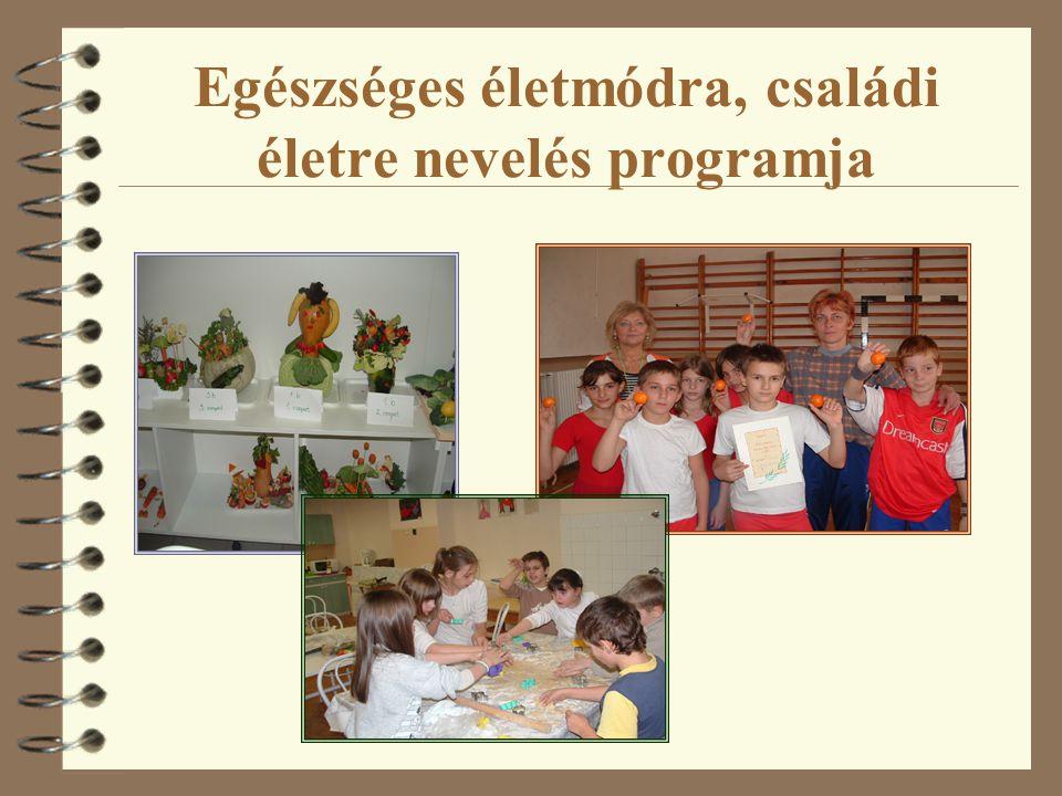 Egészséges életmódra, családi életre nevelés programja