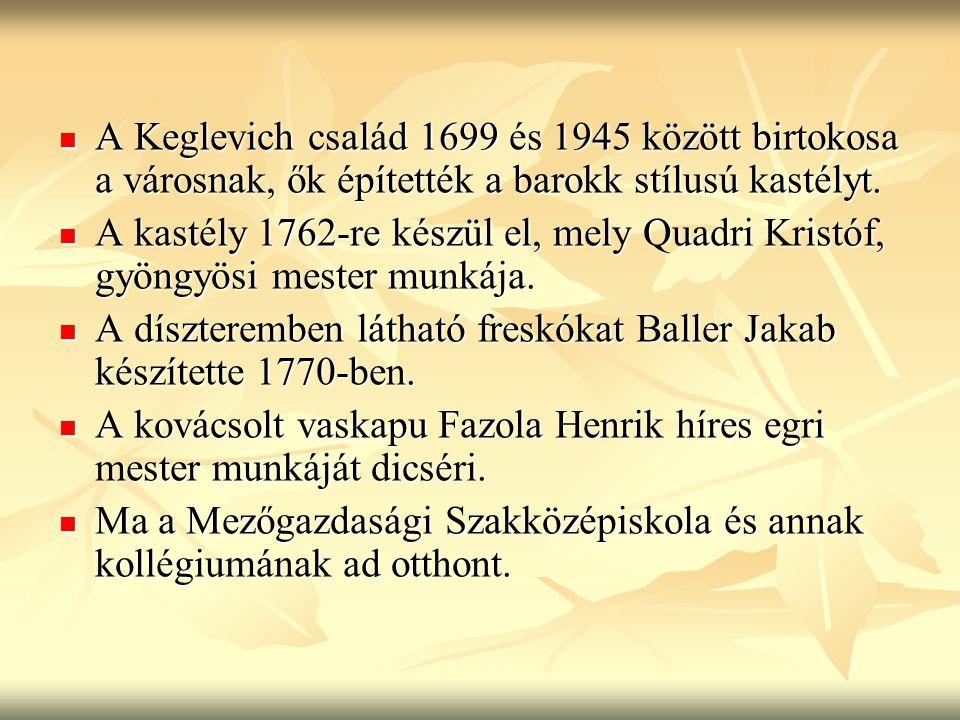 A Keglevich család 1699 és 1945 között birtokosa a városnak, ők építették a barokk stílusú kastélyt.