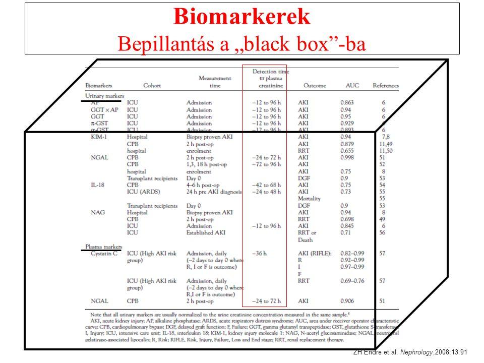 """Biomarkerek Bepillantás a """"black box -ba ZH Endre et.al. Nephrology,2008;13:91"""