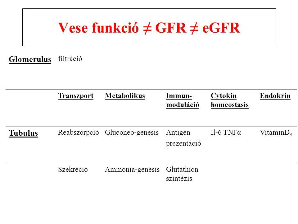 Vese funkció ≠ GFR ≠ eGFR Glomerulus filtráció TranszportMetabolikusImmun- moduláció Cytokin homeostasis Endokrin Tubulus ReabszorpcióGluconeo-genesisAntigén prezentáció Il-6 TNFαVitaminD 3 SzekrécióAmmonia-genesisGlutathion szintézis
