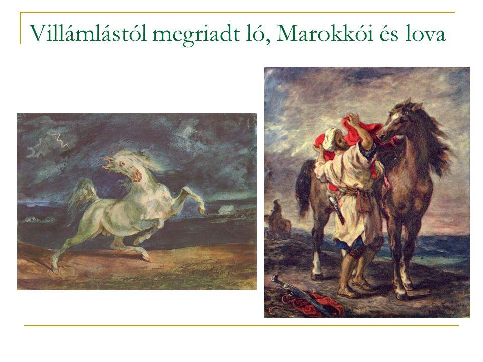 Villámlástól megriadt ló, Marokkói és lova