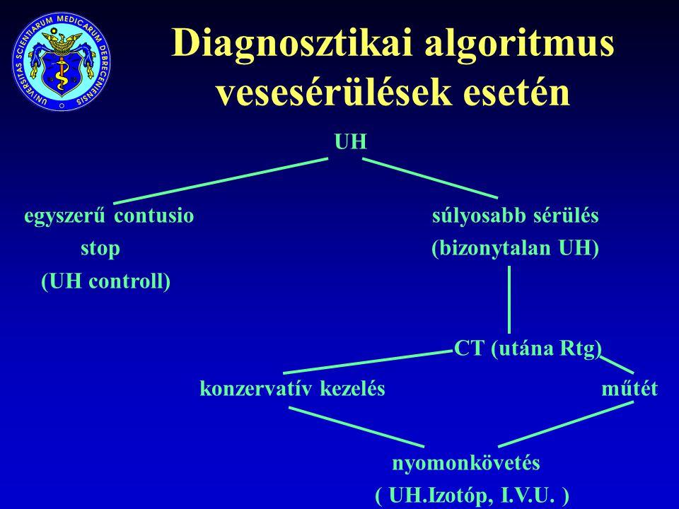 Diagnosztikai algoritmus vesesérülések esetén UH egyszerű contusio súlyosabb sérülés stop(bizonytalan UH) (UH controll) CT (utána Rtg) konzervatív kez