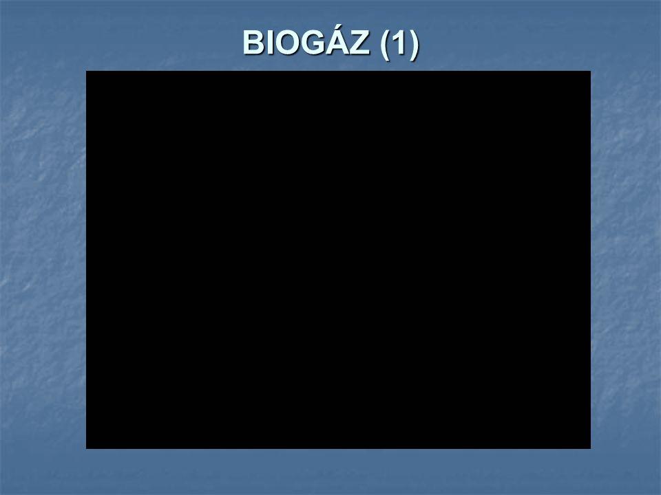 BIOGÁZ (1)