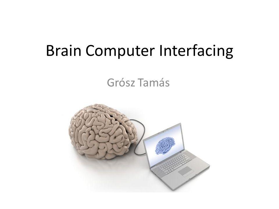 Brain Computer Interfacing Grósz Tamás