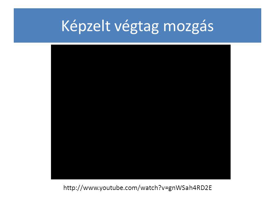 Képzelt végtag mozgás http://www.youtube.com/watch?v=gnWSah4RD2E