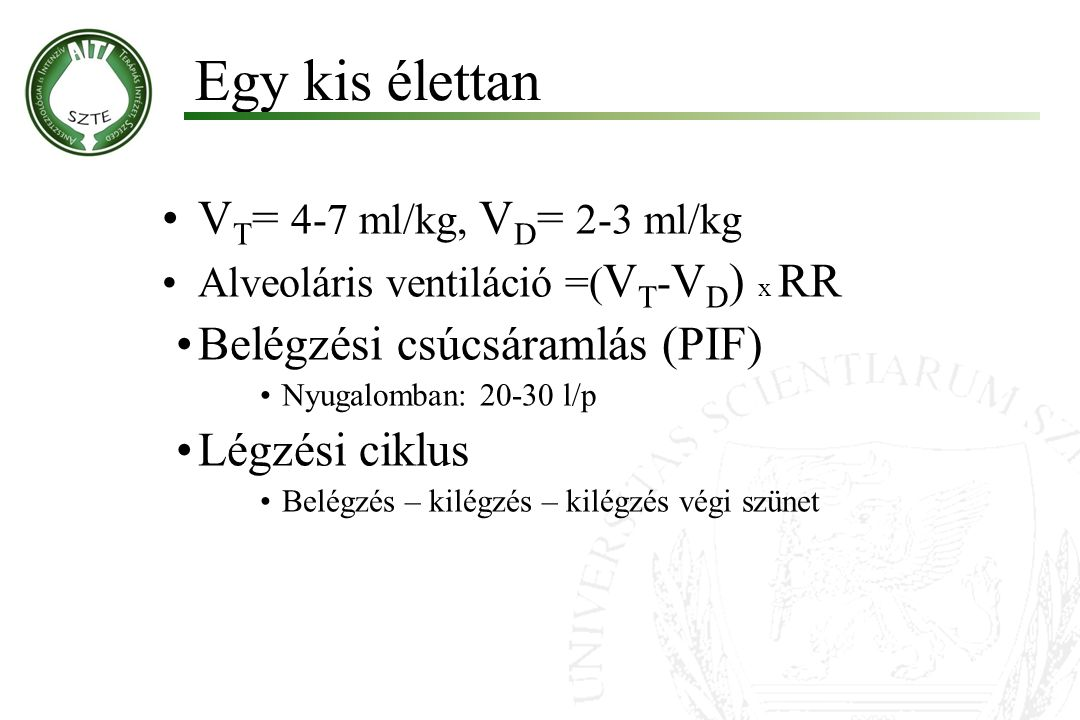V T = 4-7 ml/kg, V D = 2-3 ml/kg Alveoláris ventiláció =( V T - V D ) x RR Belégzési csúcsáramlás (PIF) Nyugalomban: 20-30 l/p Légzési ciklus Belégzés