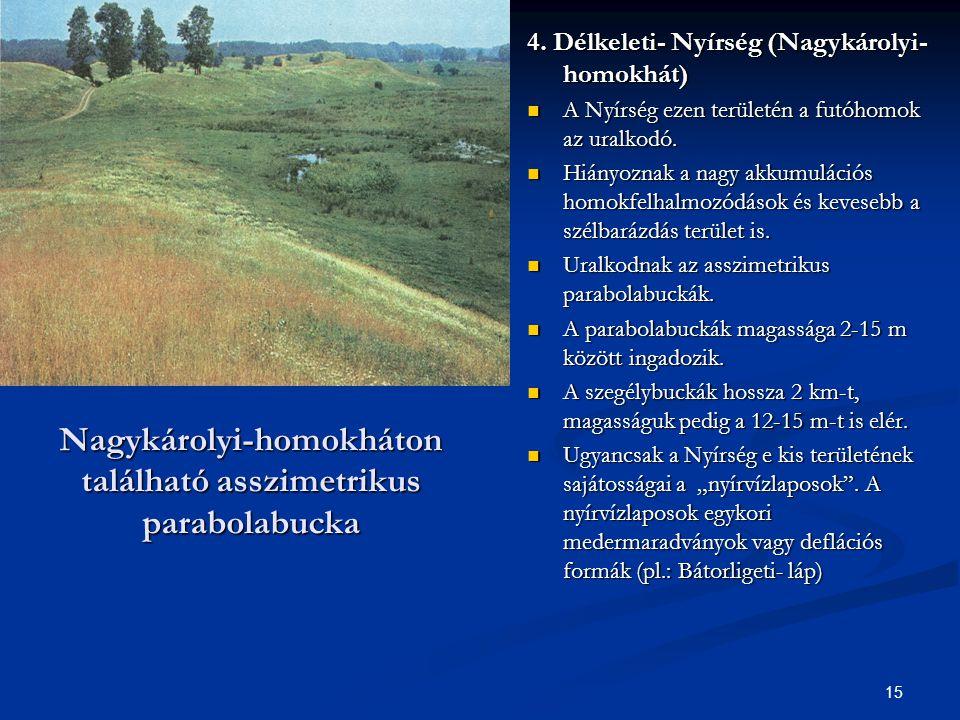 15 Nagykárolyi-homokháton található asszimetrikus parabolabucka 4. Délkeleti- Nyírség (Nagykárolyi- homokhát) A Nyírség ezen területén a futóhomok az