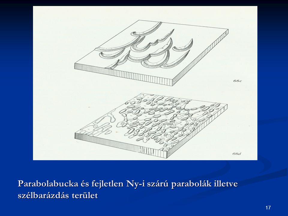 17 Parabolabucka és fejletlen Ny-i szárú parabolák illetve szélbarázdás terület