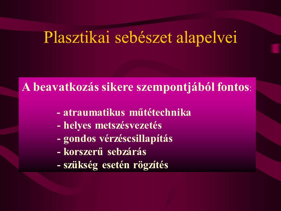 Plasztikai sebészet alapelvei A beavatkozás sikere szempontjából fontos : - atraumatikus műtétechnika - helyes metszésvezetés - gondos vérzéscsillapít