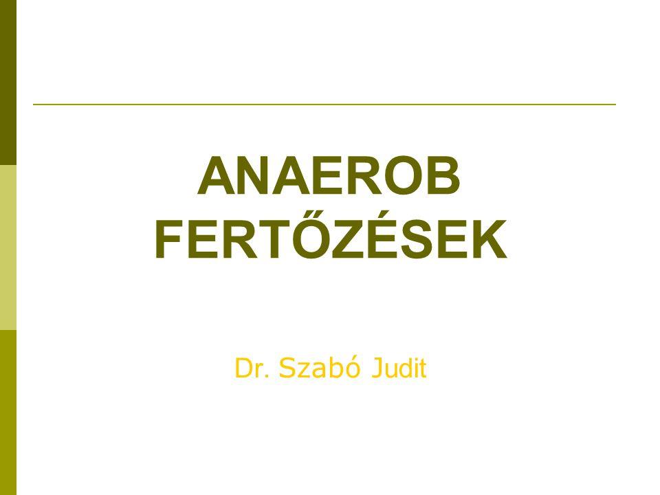 ANAEROB FERTŐZÉSEK Dr. Szabó J udit