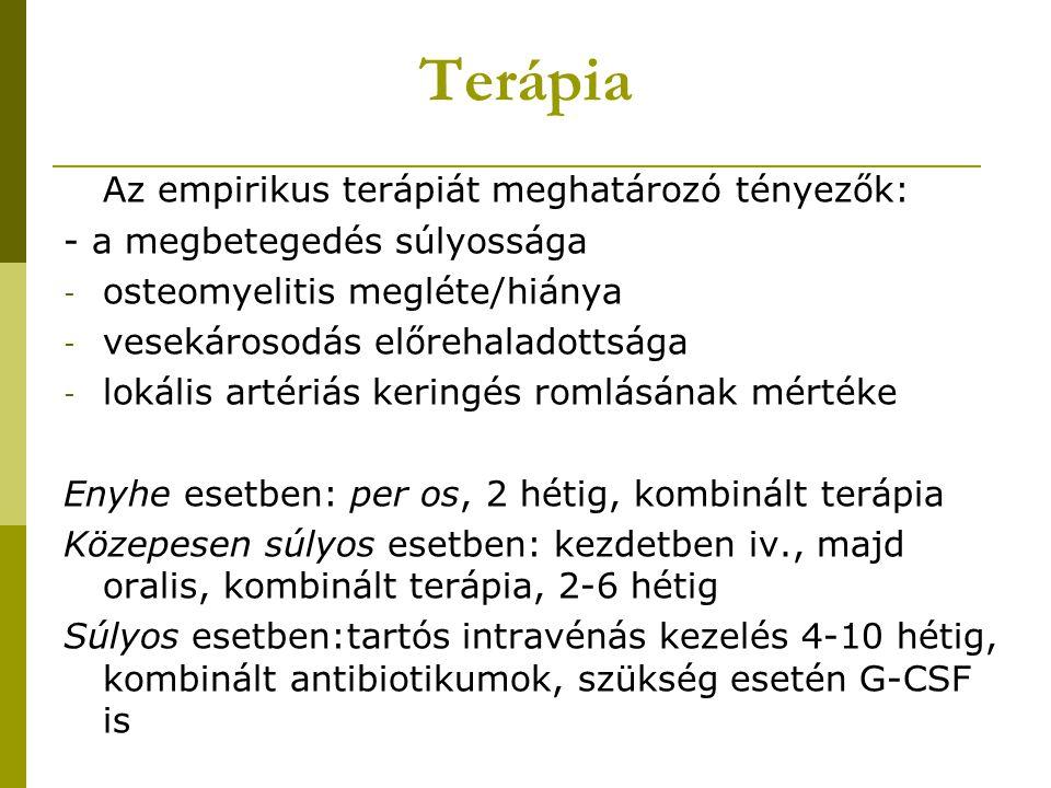 Terápia Az empirikus terápiát meghatározó tényezők: - a megbetegedés súlyossága - osteomyelitis megléte/hiánya - vesekárosodás előrehaladottsága - lokális artériás keringés romlásának mértéke Enyhe esetben: per os, 2 hétig, kombinált terápia Közepesen súlyos esetben: kezdetben iv., majd oralis, kombinált terápia, 2-6 hétig Súlyos esetben:tartós intravénás kezelés 4-10 hétig, kombinált antibiotikumok, szükség esetén G-CSF is